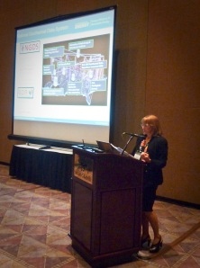 DOE Geothermal Technologies Office, Technology Manager Arlene Anderson presents the National Geothermal Data System at the International Renewable Energy Agency, GRC, IGA 2nd Geothermal Expert Meeting of the Global Renewable Energy Atlas. During the meeting, IRENA and US DOE and the Arizona Geological Survey staff began working on ways to interface the GlobalAtlas and the NGDS.