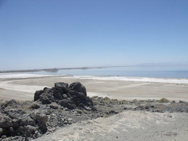 SaltonSea-Playa